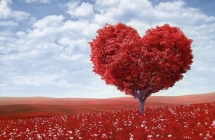 Related Articles - Your Love Language